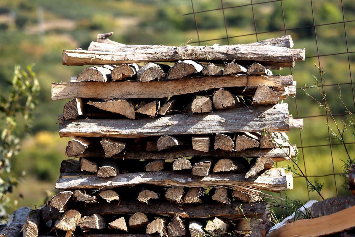 Sirota učiteljica kažnjena jer je iz svoga vinograda uzela drva za zimu!
